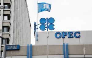ОПЕК заявила, что больше не в состоянии «защищать» цены на нефть