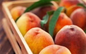 19 тонн контрабандных персиков и нектаринов уничтожат в Подмосковье
