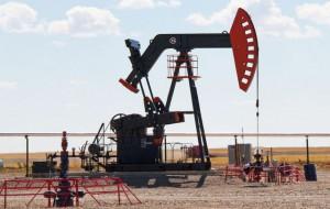 Рынок нефти практически замер из-за неясности позиции ОПЕК