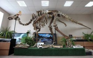 Впервые в истории науки найден окаменелый мозг динозавра