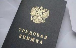 Роструд запустил сервис по онлайн-проверке трудовых договоров