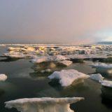Минобороны РФ примет участие в форуме «Арктика: настоящее и будущее»