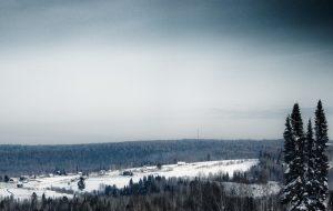Больше половины земельных участков в России оказались лишены границ