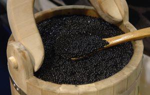 Глава Росрыболовства спрогнозировал удвоение производства черной икры