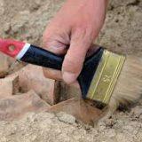 В Южно-Сахалинске завершился Международный археологический симпозиум