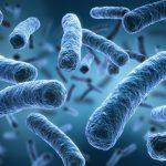 """Ученые: микрофлора россиян оказалась скрытым пособником """"супербактерий"""""""