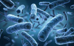 Ученые: микрофлора россиян оказалась скрытым пособником «супербактерий»