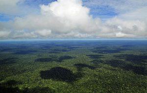 Амазонские леса вызывают собственные дожди