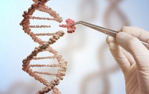 Ученым удалось изменить геном кистозного фиброза