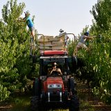 В Госдуме обсудили меры по поддержке сельхозпроизводителей
