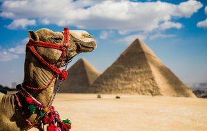 Доходы Египта от туризма выросли на 83%