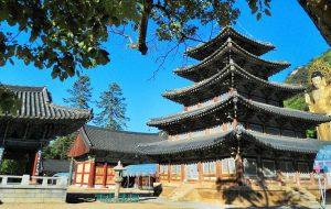 Список Всемирного наследия ЮНЕСКО пополнился новыми культурными и природными объектами