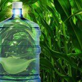 Исследователи БИТИ и СГТУ разработали экологичный полимер, заменяющий пластмассу
