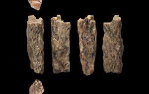 Впервые обнаружен ребенок неандертальца и денисовца