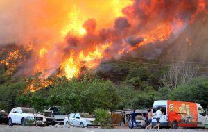 В Турции из-за лесных пожаров эвакуируют туристов