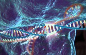 Молекулярные биологи из Москвы поменяли структуру ДНК эмбрионов, так что они стали неуязвимы для ВИЧ