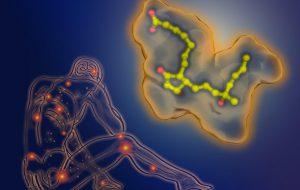 «Карман» для мизопростола: ученые установили 3D структуру комплекса лекарства с рецептором