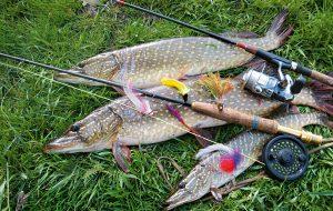 Календарь рыбалки на нижней Волге