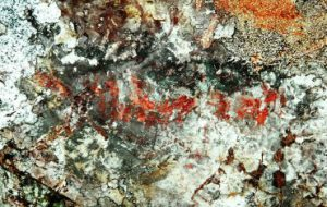 Ученые ПетрГУ впервые обнаружили на территории Карелии наскальный рисунок, выполненный охрой