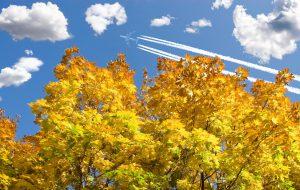 Маршруты для осенних путешествий: куда выгоднее слетать в октябре?