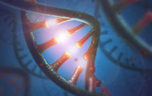 Обнаружен новый тип РНК, который может играть роль в старении