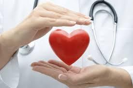 Сердечные ткани разного происхождения оказались способны биться в такт