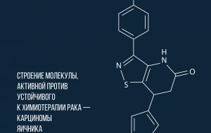 Учёные нашли молекулу против устойчивого к химиотерапии рака