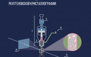 Рентгеновский лазер ускорил определение структур белков, важных для медицины