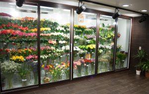 Холодильные камеры для цветов, индивидуальное проектирование и полный комплекс дополнительных услуг