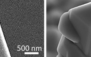 Ученые ИФП СО РАН и ИНХ СО РАН создали ключевые наноэлементы для посткремниевой электроники и нейрокомпьютеров