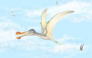 В Африке найдены останки зубастых птерозавров неизвестных видов