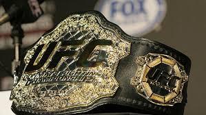 Назван состав участников запланированного на 9 мая турнира Абсолютного бойцовского чемпионата (UFC)