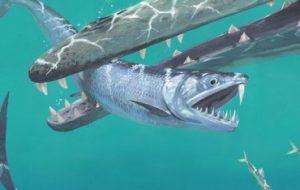 «Саблезубые анчоусы» охотились в океанах около 45 миллионов лет назад