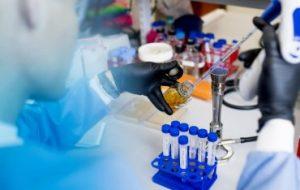 Новый вид бактерий обнаружен в подземных водах, в микробиоме животных и человека