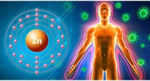 Нехватка цинка в организме грозит негативным исходом COVID-19