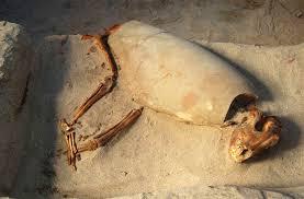 Найдено уникальное захоронение людей и домашнего животного