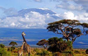«Интурист» запустил продажи туров в Танзанию