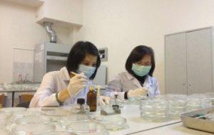 Действия эфирных масел на противогрибковые биопрепараты
