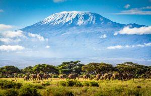 7 интересных фактов о Танзании