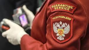 Минздрав опроверг информацию об ограничении передвижения по РФ