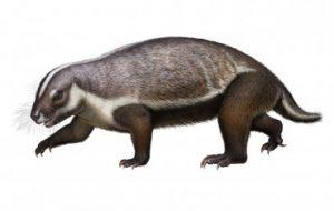 Ученые описали «сумасшедшего зверя», жившего в эру динозавров