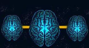 Российские нейрофизиологи изучили механизм конформности мозга