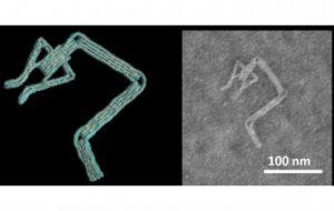 Инженеры научились создавать ДНК-роботов за считанные минуты