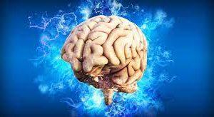 Ученые из США и Канады исследовали особенности мозга у одиноких людей
