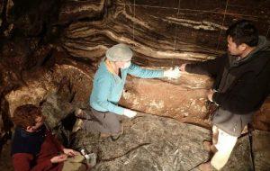 В Денисовой пещере обитали 3 вида людей