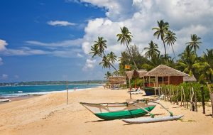 Привитые туристы смогут въехать на Шри-Ланку без необходимости прохождения карантина