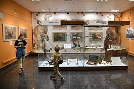 В Дарвиновском музее открылась выставка русского палеоарта