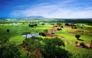 Приостановка авиасообщения с Танзанией продлена до 1 октября